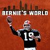 1.13.21 - Bernie with CBD